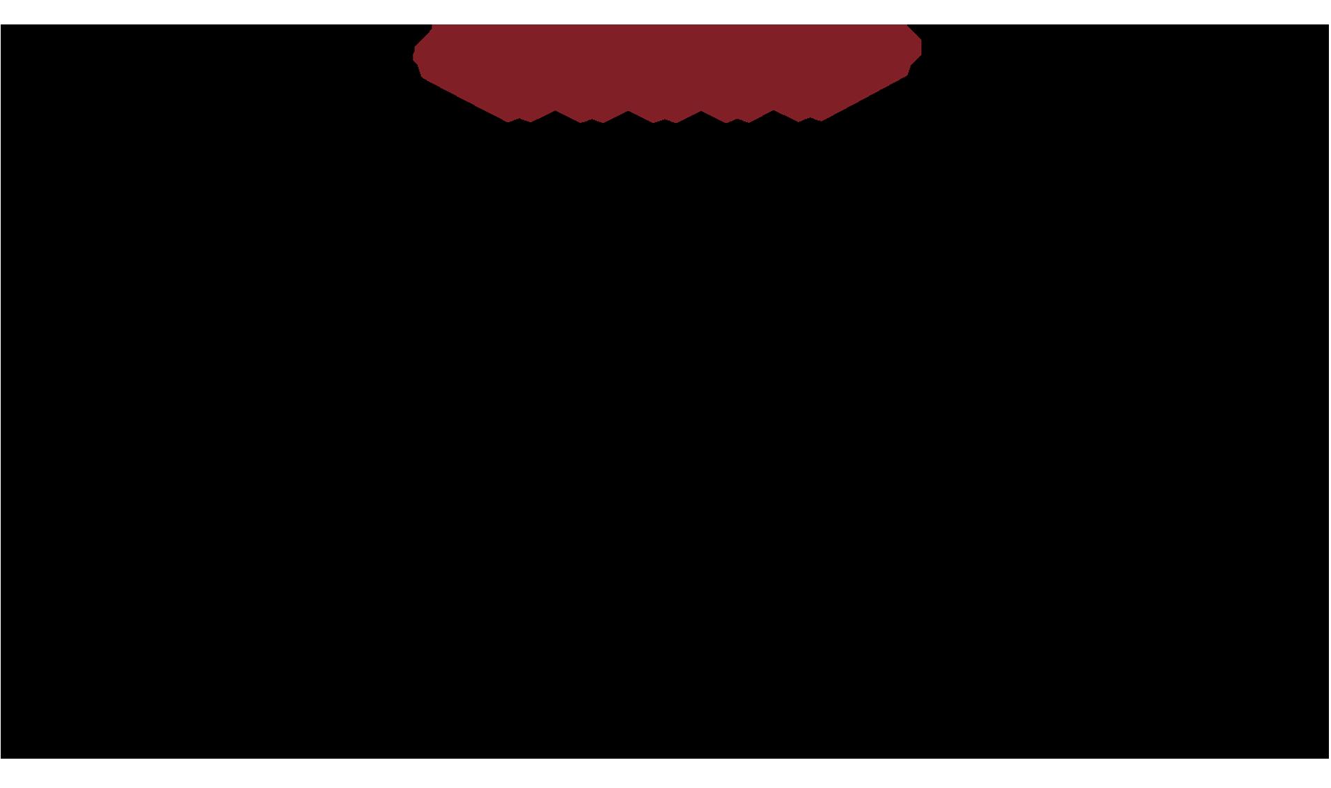 Logo LBH Roma Luxus